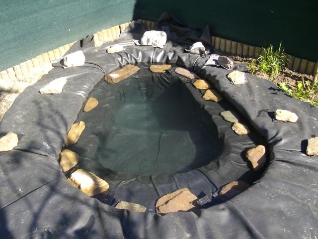 Aide filtration naturelle pour bassin extérieur  - Page 2 Imgp0113