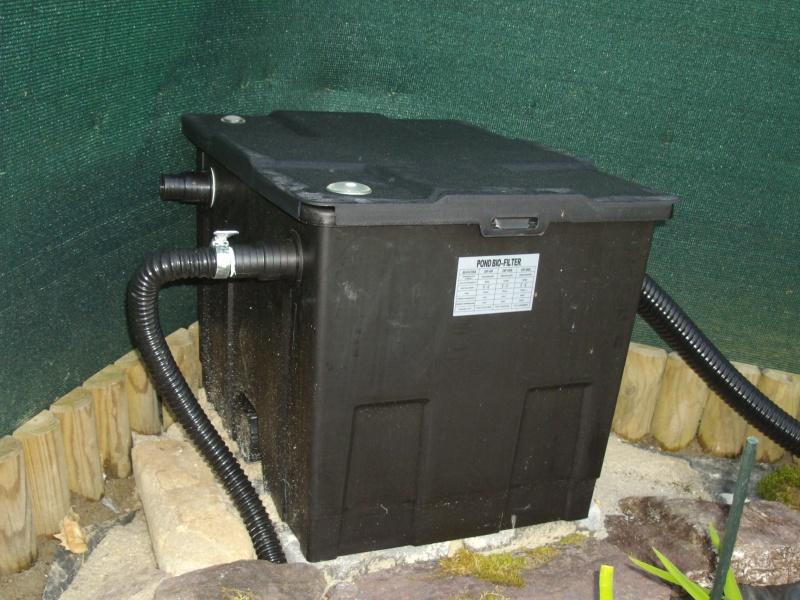 Aide filtration naturelle pour bassin extérieur  - Page 2 Imgp0119