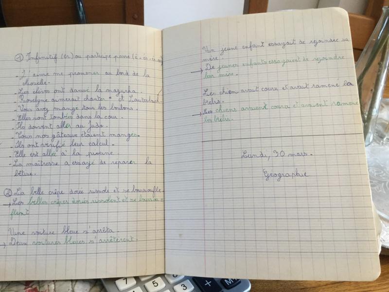 Effarée devant le niveau des 6e en grammaire. - Page 3 Image36