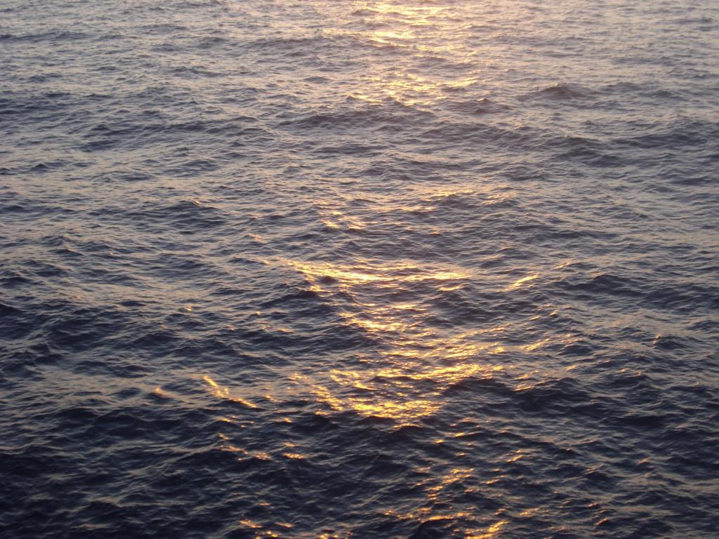Nouvelle image de fond 10-08-11