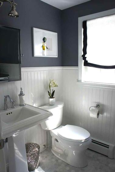 salle de bains kitch à peindre Sb_gri10