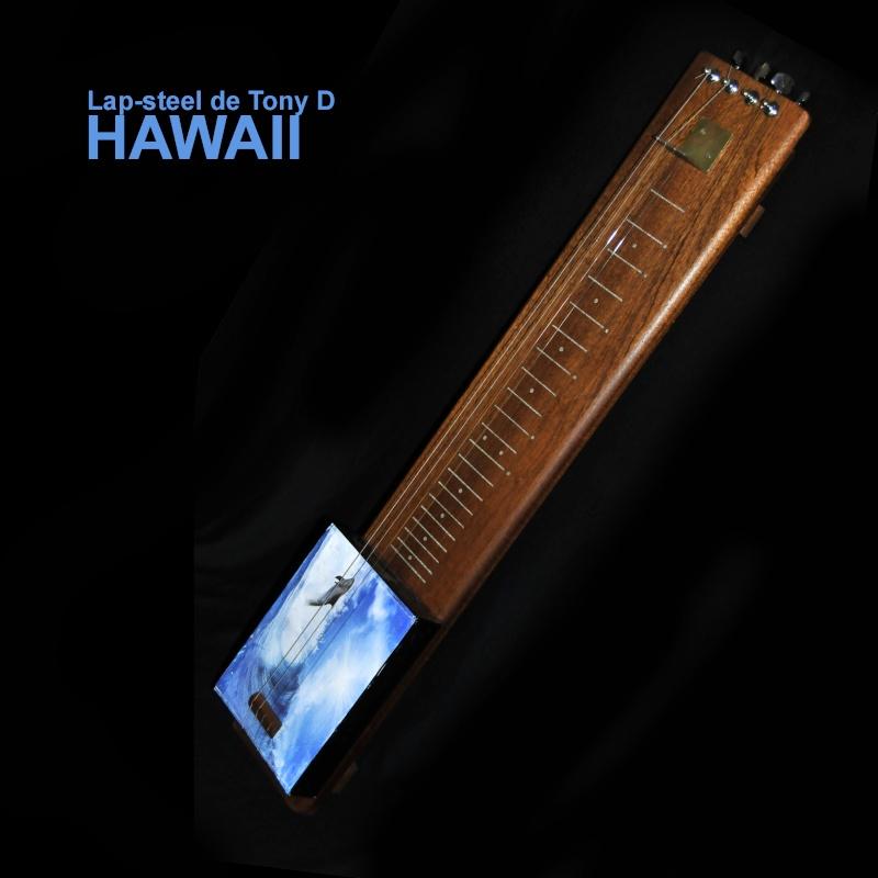 Cigar Box Guitar Mirsa Pépence - Page 3 Hawaii10
