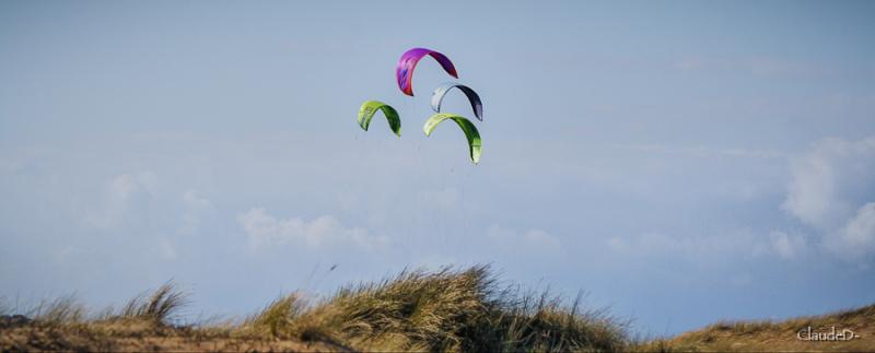 O.V.I.  :) Kite10