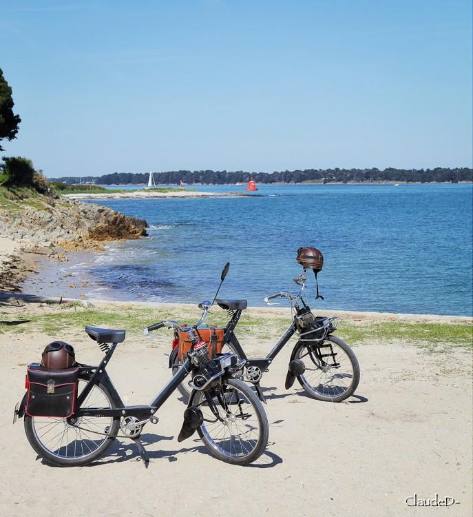Easy rider :) Solex10