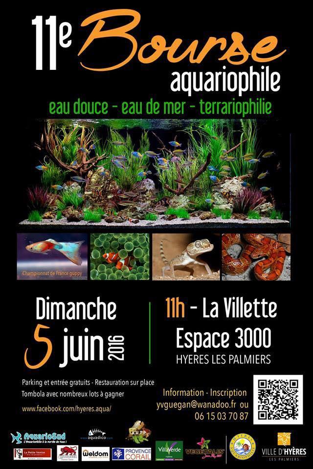 11e bourse Aquariophile de Hyères, 5 Juin 2016 12933010