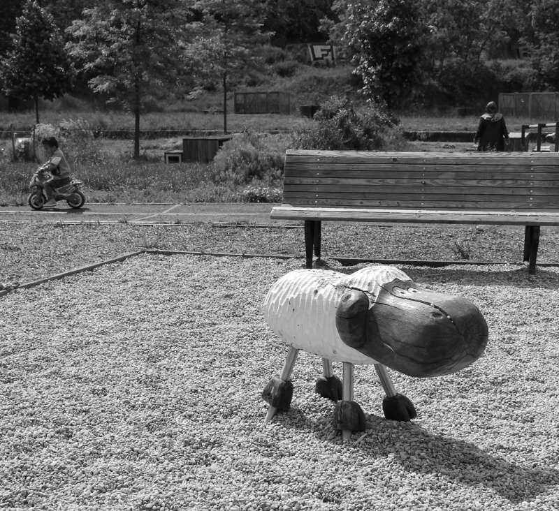 série noir et blanc divers Imagem11