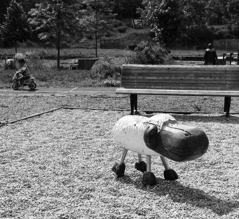 série noir et blanc divers Imagem13