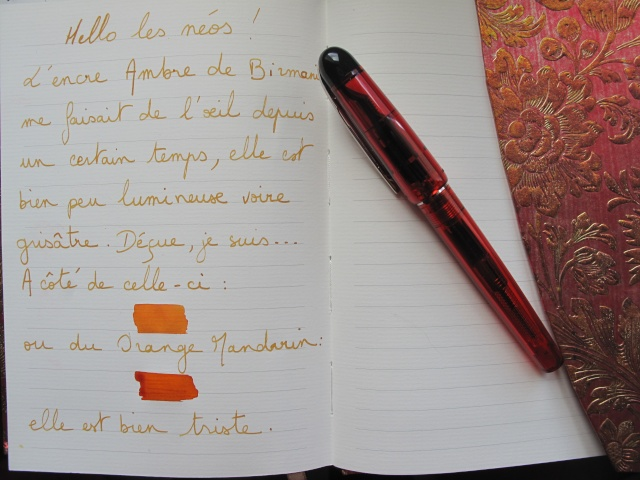 Stylos plume - Page 30 Img_1916