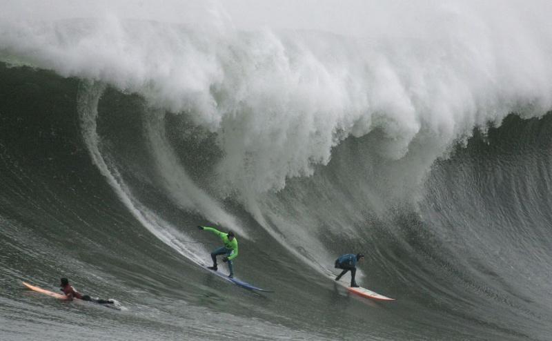 Surf 920x9210
