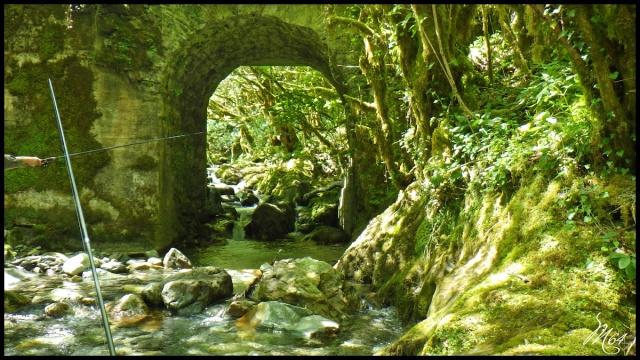 ruisseau - Sortie sur un nouveau ruisseau. Rimg1032