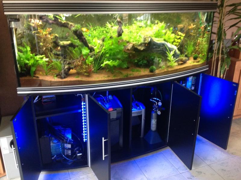 je me présnte  et mon aquarium Img_0221