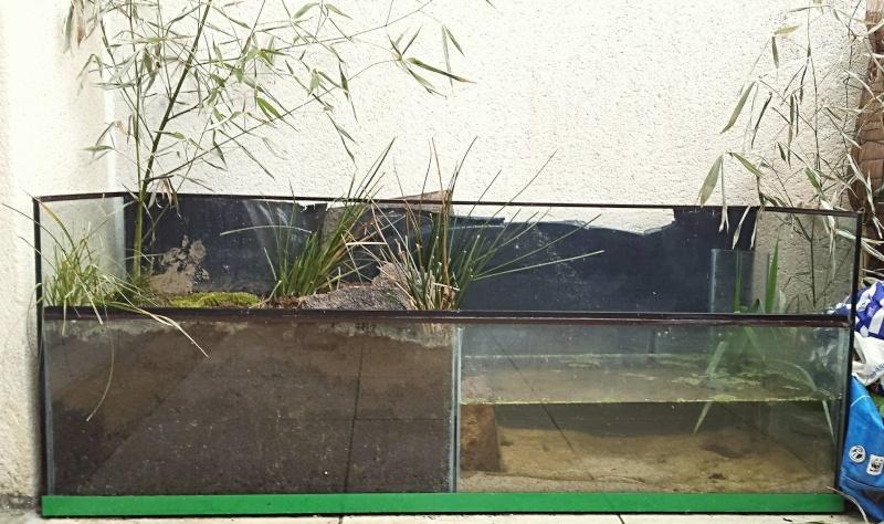 Le petit étang de Séby  12948510