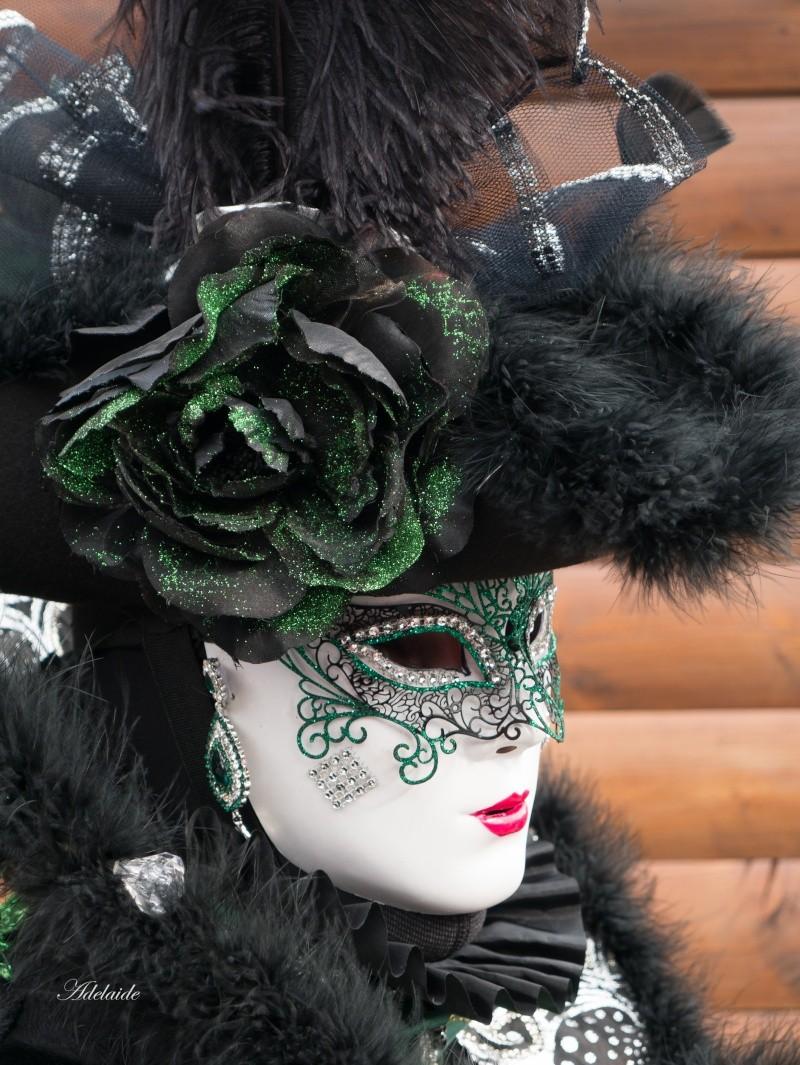 Carnaval Vénitien de Castres P1150121