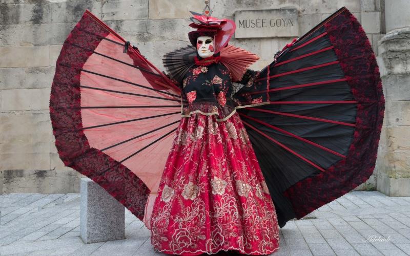 Carnaval Vénitien de Castres P1150212