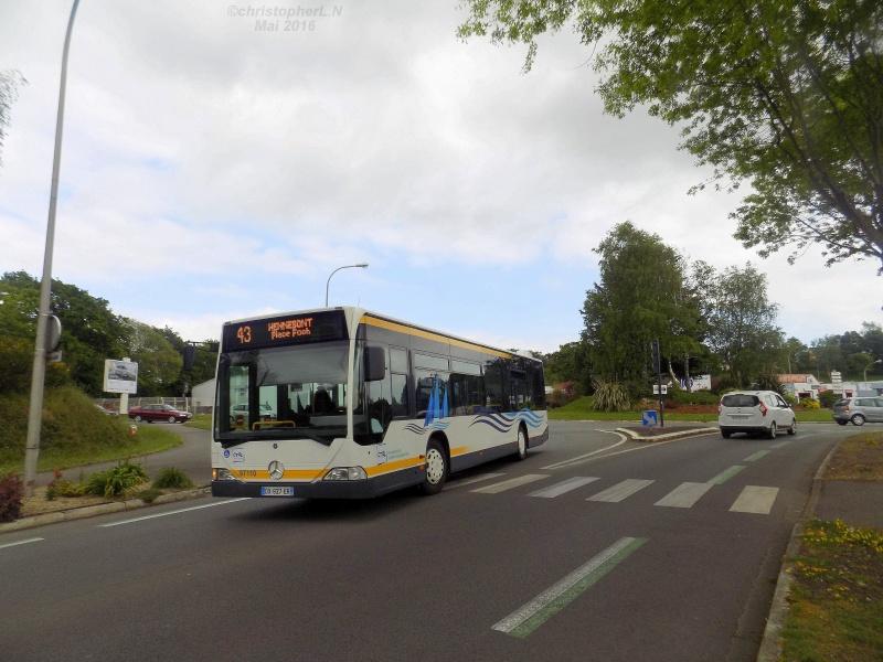 CTM - Compagnie de Transports du Morbihan - Page 4 Dscn3612
