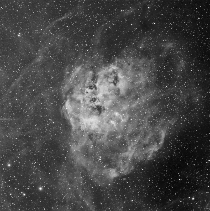 IC 410 - La nébuleuse du tétard en Ha Ic410_11