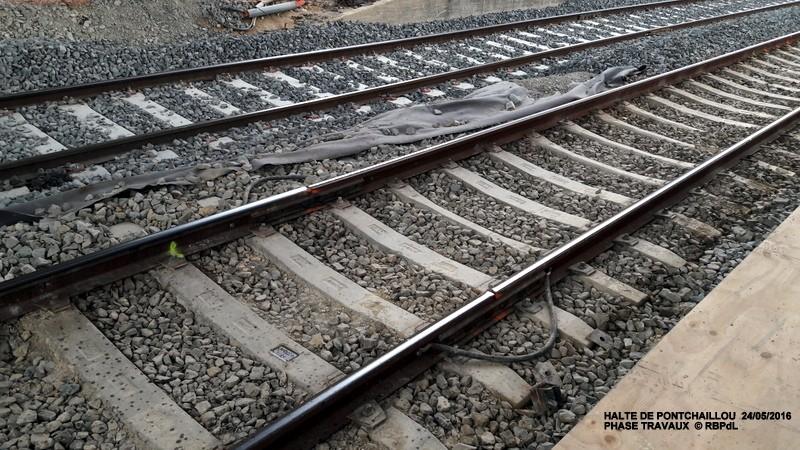 Halte de Pontchaillou, suite phase travaux - mai 2016 20160370