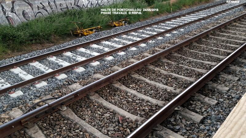 Halte de Pontchaillou, suite phase travaux - mai 2016 20160598