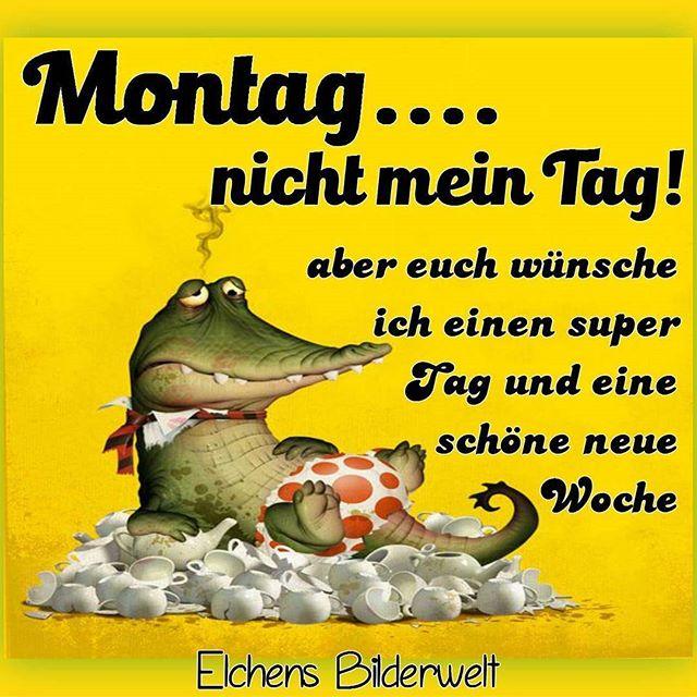 Montag ....... Image15