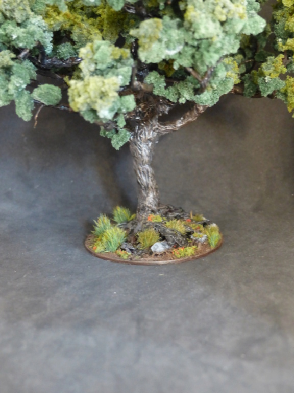 Fabriquer soi-même sa mousse synthétique (soclage, arbres) P1050314