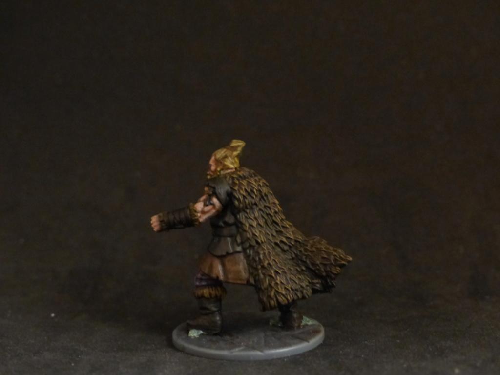 Frostgrave: Présentation du jeu et galerie de Winterfell P1050413