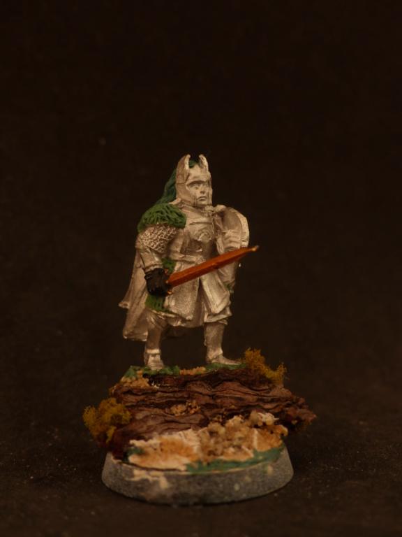 Capitaine de Numénor conversion P1060312