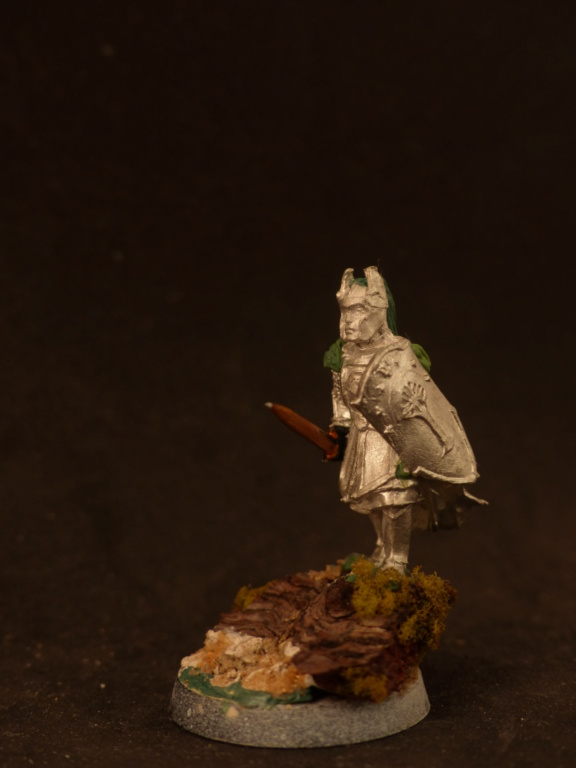 Capitaine de Numénor conversion P1060314
