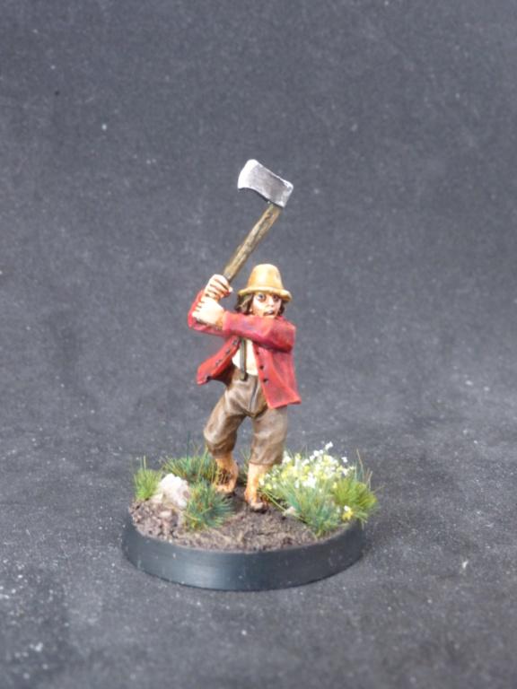 Hobbits de la comté P1060410