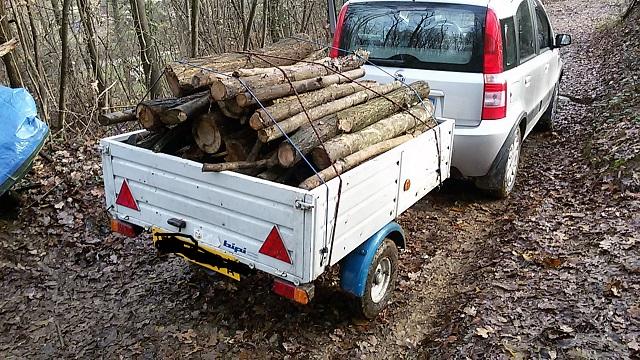 Schema Elettrico Per Carrello Appendice : Consiglio auto rimorchio leggero per trasporto legna