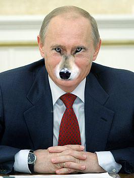 Les délire cheloux de Yamashi Poutin10