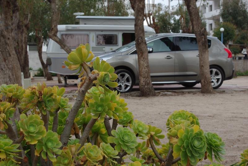 [Maroc Camp/Dernières nouvelles] Camping l'Océan Bleu à Mohammedia Imgp8910