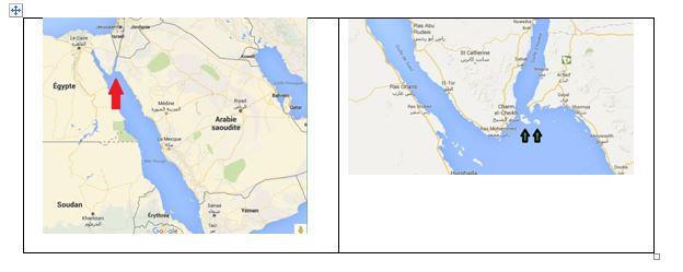 Egypte - Arabie Saoudite et le Détroit de Tiran 1604310