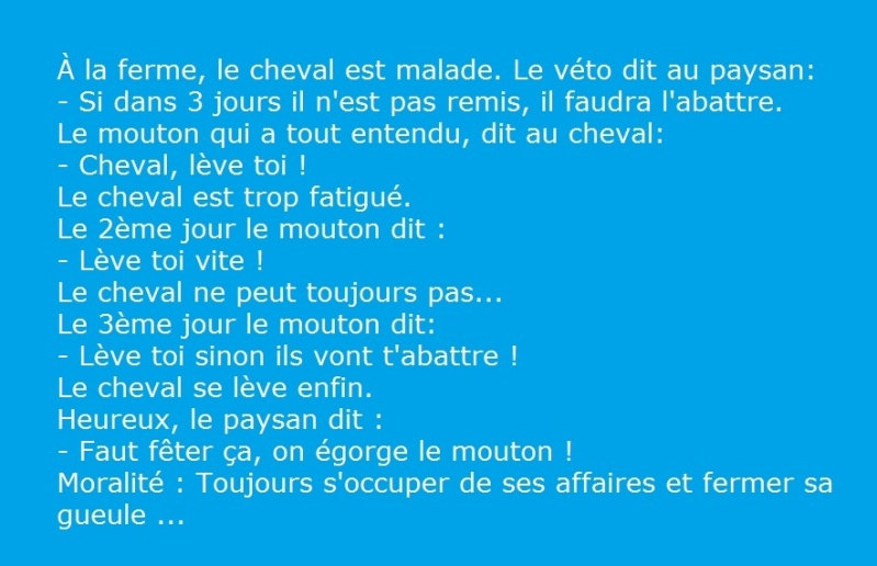 HUMOUR - blagues - Page 17 04chat10
