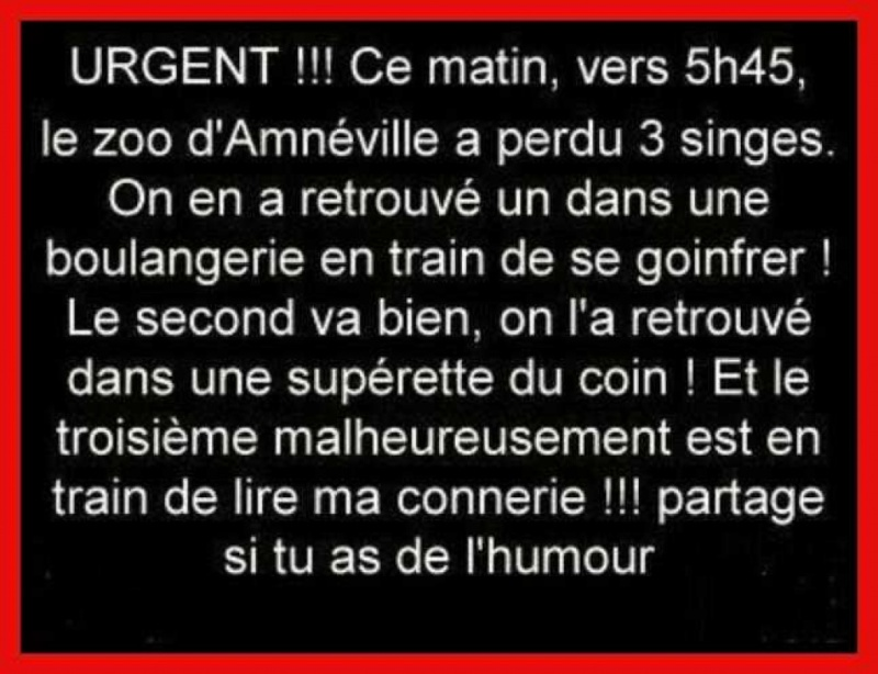 HUMOUR - blagues - Page 17 84375910