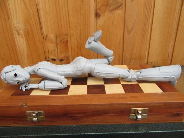 Robotica :découverte de l'autre ... Img_0365
