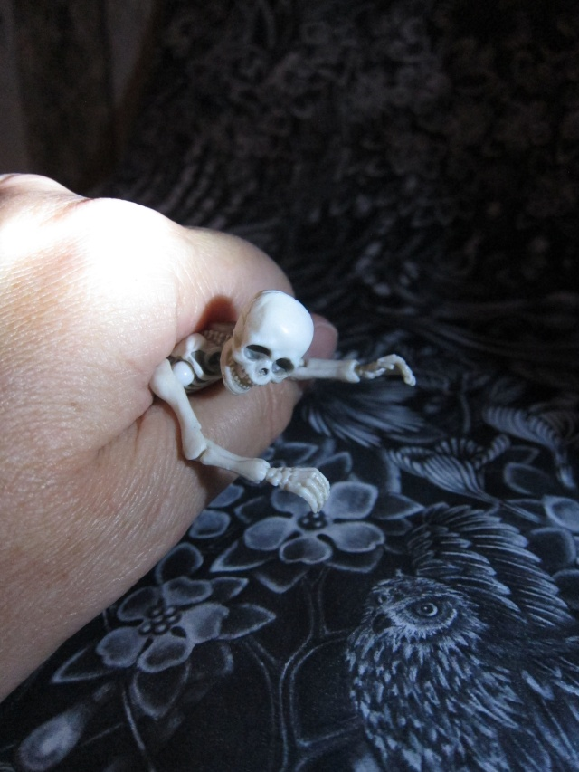 [Re-ment Skeleton ]Sally + Jack =bébé os - Page 2 Img_7531