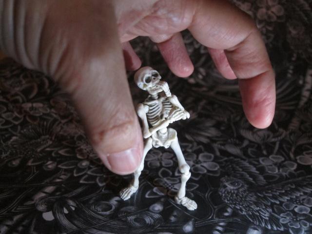 [Re-ment Skeleton ]Sally + Jack =bébé os - Page 2 Img_7532