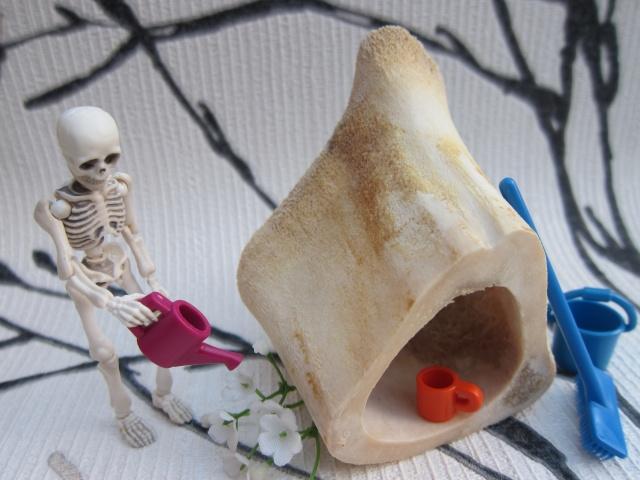[Re-ment Skeleton ]Sally + Jack =bébé os - Page 2 Img_8810