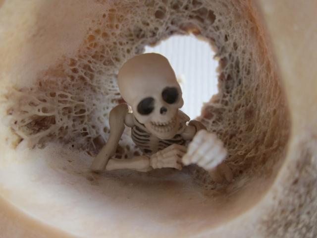 [Re-ment Skeleton ]Sally + Jack =bébé os - Page 2 Img_8811