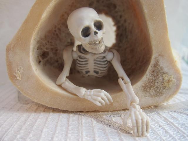 [Re-ment Skeleton ]Sally + Jack =bébé os - Page 2 Img_8812