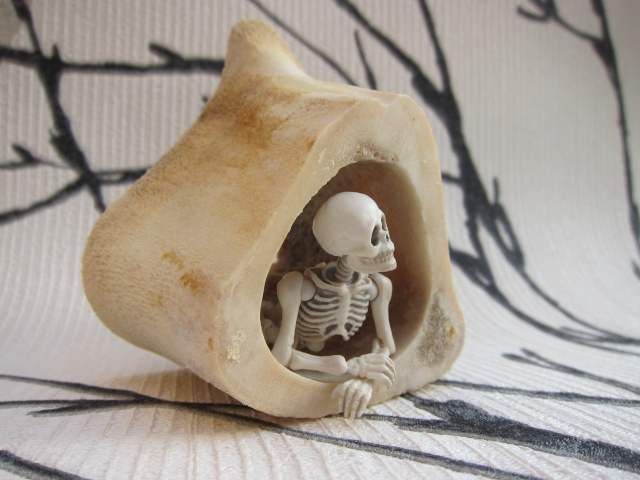 [Re-ment Skeleton ]Sally + Jack =bébé os - Page 2 Img_8813