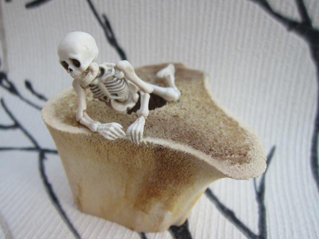 [Re-ment Skeleton ]Sally + Jack =bébé os - Page 2 Img_8814