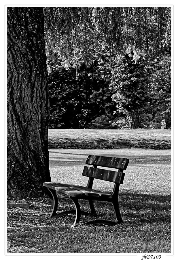 Thème du mois de mai - Noir & Blanc Dsc_3610