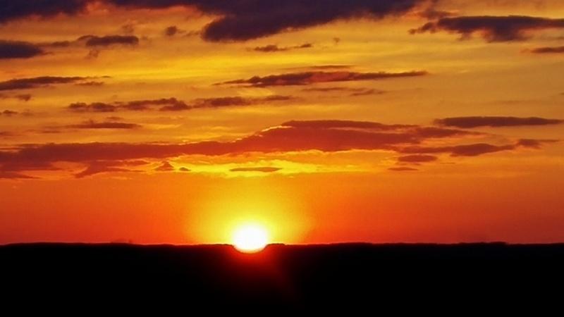 Good morning Sunshine! 04011611