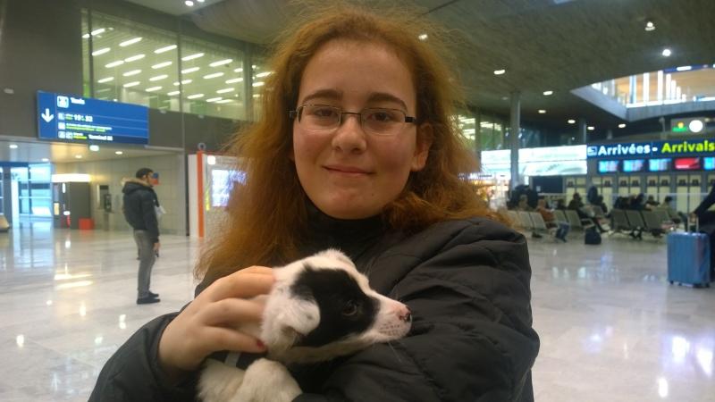 SISSI (ex ARLEQUINE), chiot femelle, née en décembre 2015 - REMEMBER ME LAND - adoptée par Irène (dpt74) Wp_20114