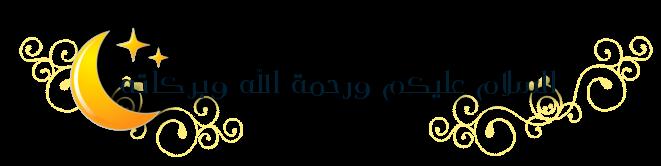 Newsletters  Salam13