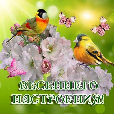 весна пришла 98789610