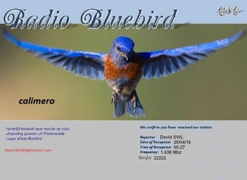 eQSL de Bluebird 29-04-11