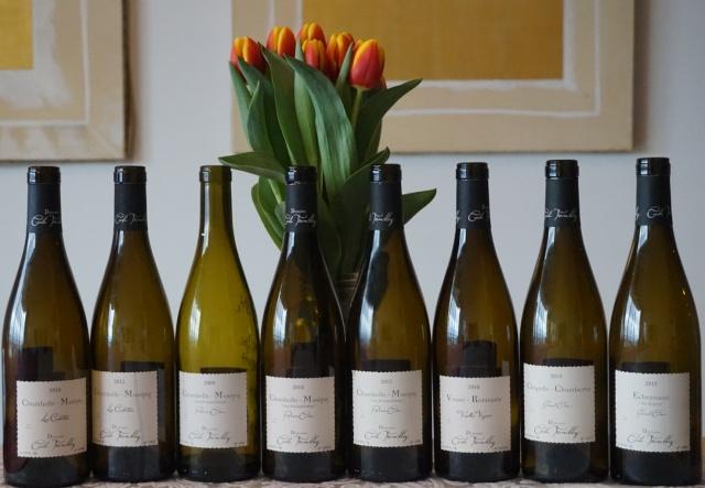 Dégustation des vins de Cécile Tremblay Cycile11