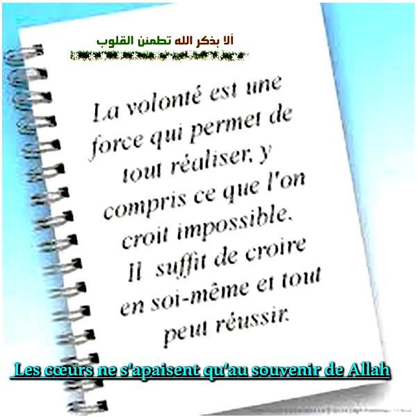 la volonté Les_ca10